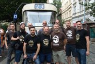 Tour through the city for bears